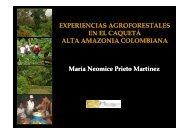 Seminario_Maria_Martinez [Modo de Compatibilidade] - Embrapa
