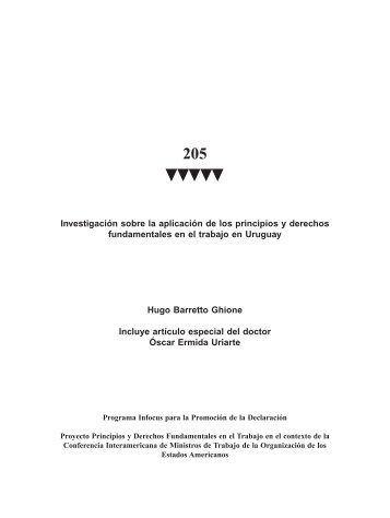Investigación sobre la aplicación de los principios y derechos ...