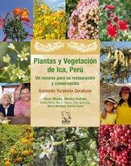 Plantas y vegetación de Ica   Perú (.pdf) - Royal Botanic Gardens, Kew