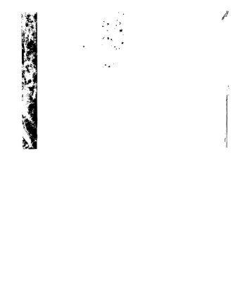 """Page 1 . '-.. """" . ' . .. ¡Y Page 2 Hugh ,\1'//"""