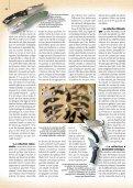 SUR LA COLLECTION DE COUTEAUx - Relentless Knives USA - Page 6