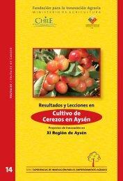 Cultivo de Cerezos en Aysén - Biblioteca Digital SilvoAgropecuaria ...