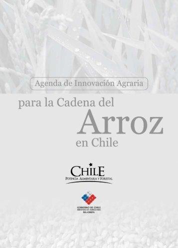 Agenda de Innovación Agraria para la Cadena del Arroz en Chile - Fia