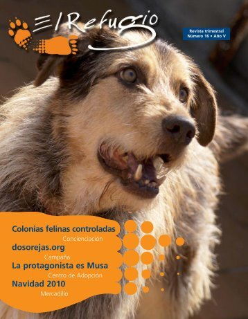Colonias felinas controladas dosorejas.org La ... - El Refugio