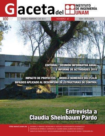 Gaceta Enero-Febrero 2011 - Instituto de Ingeniería, UNAM