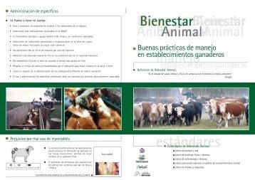establecimientos ganaderos - Bienestar Animal
