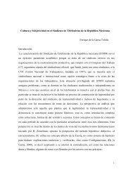 Cultura y Subjetividad: el caso del STRM - UAM