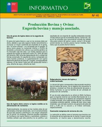 Ver Ficha - Nodo Carne Bovina