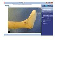 6 PDF download Preparación del modelo Moldear las ... - Fior & Gentz