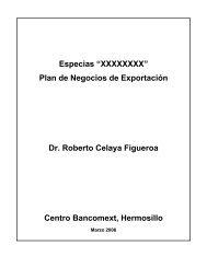 """Especias """"XXXXXXXX"""" Plan de Negocios de Exportación Dr ..."""