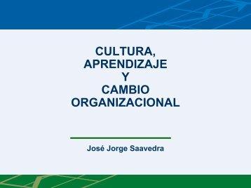 Cultura, Aprendizaje y Cambio Organizacional