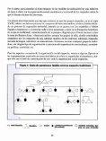 Conocimiento antropológico sobre los mapuche de C a . Efec- tos ... - Page 6