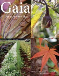 Spring 2011 Issue III - Get a Free Blog