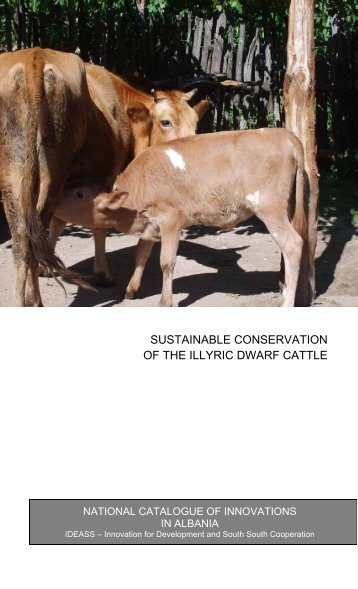 sustainable conservation of the illyric dwarf cattle - Agency for ...