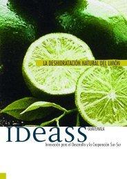 la deshidratación natural del limón - Programa de Naciones Unidas ...