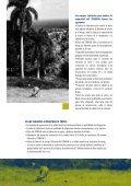 EL STABILAK - Programa de Naciones Unidas para el Desarrollo - Page 5
