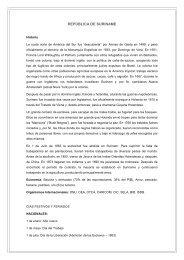 REPÚBLICA DE SURINAME - OTCA