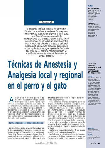 Técnicas de Anestesia y Analgesia local y regional en el perro y el gato