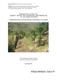 Report Feasibility study organic bitter tea Cao Bang - Helvetas