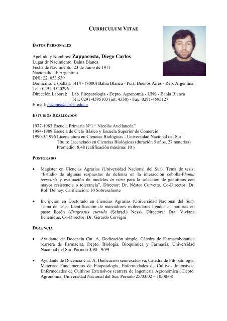 Curriculum Vitae Universidad Nacional Del Sur