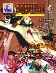 Nos 374-375 - Diócesis de San Juan de los Lagos