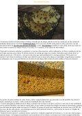 """""""La Polinización - Las abejas - El arándano"""", """"La apicultura: una ... - Page 5"""