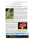Crónica de un viaje realizado por Mario Gastón (Teropus) y amigos - Page 2