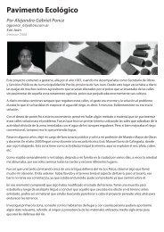 Pavimento Ecológico, por Alejandro Gabriel Ponce - Innovar