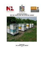 Proyecto Enavasado y venta de miel - Nuevo León