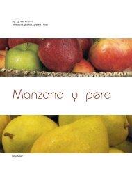 Manzana y pera - Alimentos Argentinos