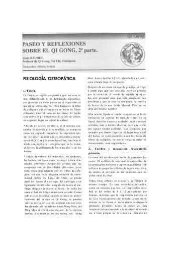 PASEO Y REFLEXIONES SOBRE EL QI GONG (2ª PARTE)