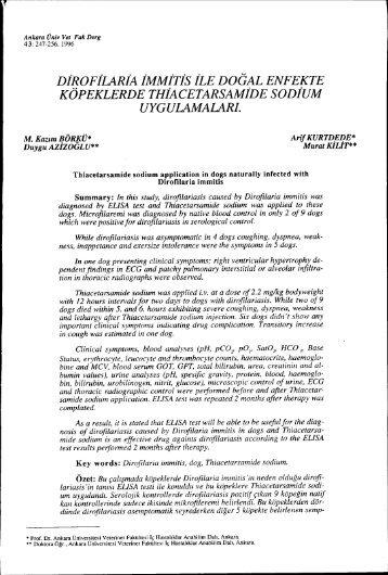 DiROFiLARiA iMMiTis iLE DOGAL ENFEKTE KÖPEKLERDE ...