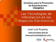 Introducción - Las Tecnologías de Información en los ... - Siicex