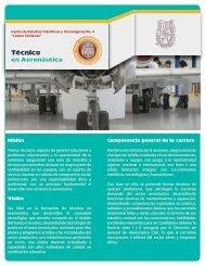 Técnico - Cecyt 4 Lazaro Cardenas - Instituto Politécnico Nacional