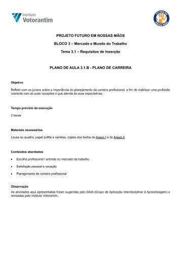 3.1B - Plano de Carreira - Instituto Votorantim
