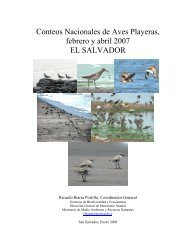 1er Conteo Nacional de Aves Playeras, 3 de febrero2007, El Salvador