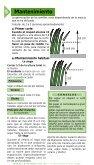 Plantar el césped - Page 6
