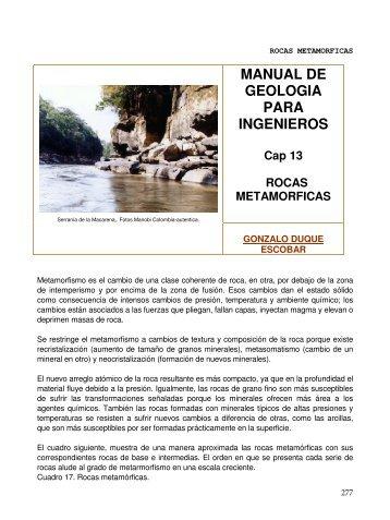 PDF (Capítulo 13) - Universidad Nacional de Colombia