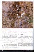 Especietípica de roquedos calizos y dolomíticos, colonizando las ... - Page 2