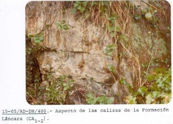 15-05/AD-DN/400 .- Aspecto de las calizas de la Formación Láncara ...