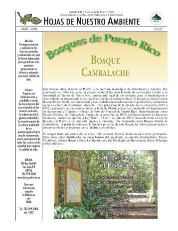 BOSQUE CAMBALACHE - Puerto DRNA