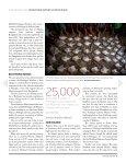 Apartheid arises in Myanmar - Page 4