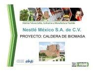 Caldera de Biomasa, Nestlé México