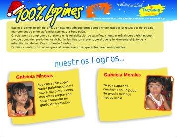 Nuestros logros - Fundación Lupines