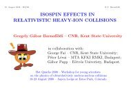 isospin effects in relativistic heavy-ion collisions - Hot Quarks 2008