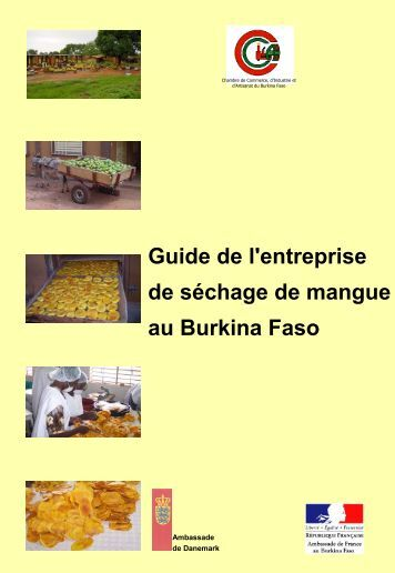 Kanis international sobelec sogeb p ezof chambre de for Chambre de commerce du burkina
