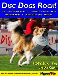 Disc Dogs Rock! - Skyhoundz