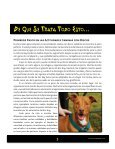Disc Dogs Rock! - Skyhoundz - Page 3