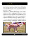 Disc Dogs Rock! - Skyhoundz - Page 6
