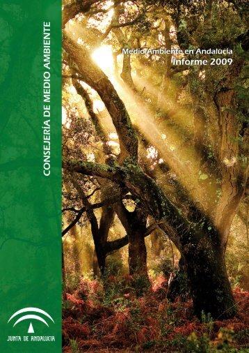 Informe Anual de Medio Ambiente Andalucía 2009 - Junta de ...